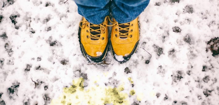 mojo-blog-color-yellow-snow-1